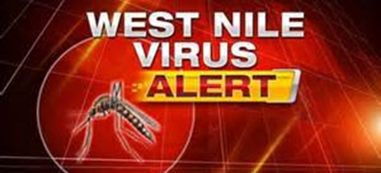 Mosquito Carrying West Nile Virus found in Northwest Bexar County